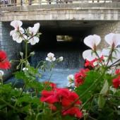 ponte-di-legno_1250666420