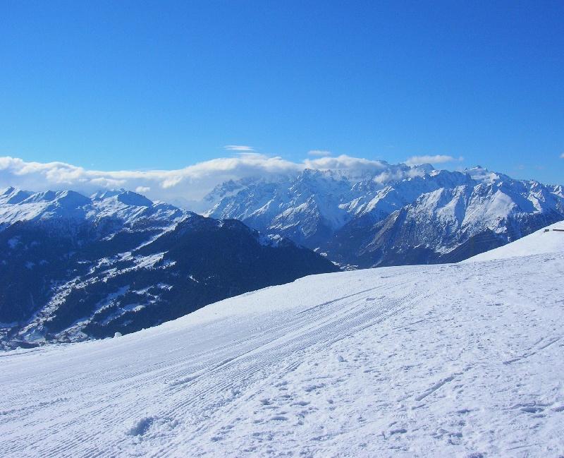 Viaggio in svizzera il vallese ed il cane del gran san - Dogana svizzera cosa si puo portare ...
