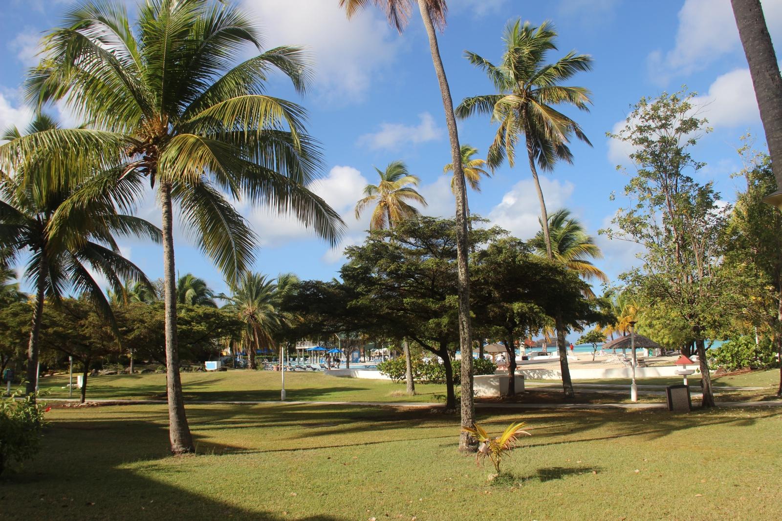 Tranquillity Bay