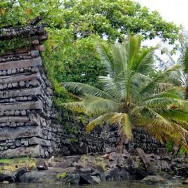 DSC_5083 Pohnpei Nan Douwas resti del tempio principale
