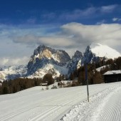 Pista di Fondo Alpe di Siusi