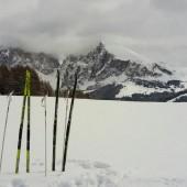 Pista di Fondo Alpe di Siusi (2)