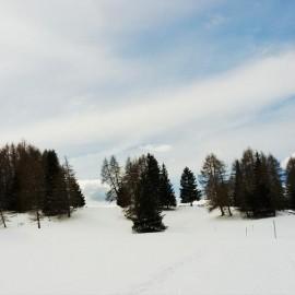 Pista di Fondo Alpe di Siusi (4)