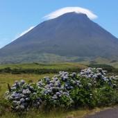 14) Monte Pico