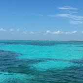 Barca Isla Contoy 08