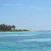 Isla Contoy 08