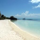 Isla Contoy 15