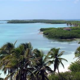 Isla Contoy 17