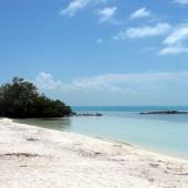 Isla Contoy 23