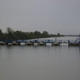 ponte (Copia)