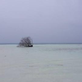 012 dhiffushi spiaggia bassa marea