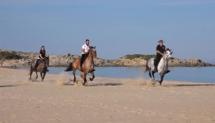 Cavalli a su giudeu (3).Movie_Istantanea