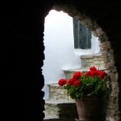 98-Monastiri