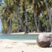 85-Isola Deserta-Un giorno in paradiso