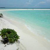 Sand bank1
