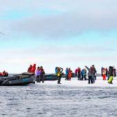 Passeggiata sul pack a 520 miglia dal Polo Nord