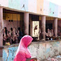 Reparto macelleria del mercato di Dikhil