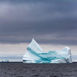 DSC_3426 Primi iceberg
