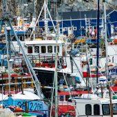DSC_4789 Che casino nel porto di Ilulissat