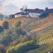 Vigneti sulle colline di Monforte d'Alba