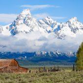 Moulton barn e il Teton Range