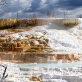 Palette Spring - Mammoth Hot Springs