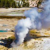 Steamboat geyser - Norris Geyser Basin