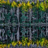 Algonquin Provincial Park - 3