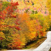 Maine 17 Highway - 1