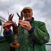Pesca all'astice a Bar Harbor