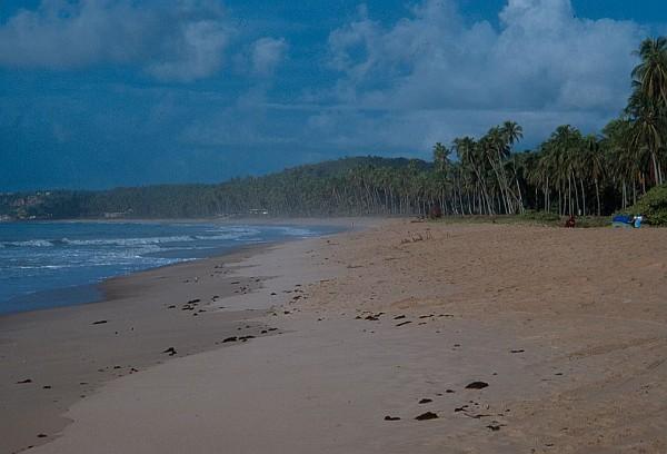Spiaggia-4-da-inserirea