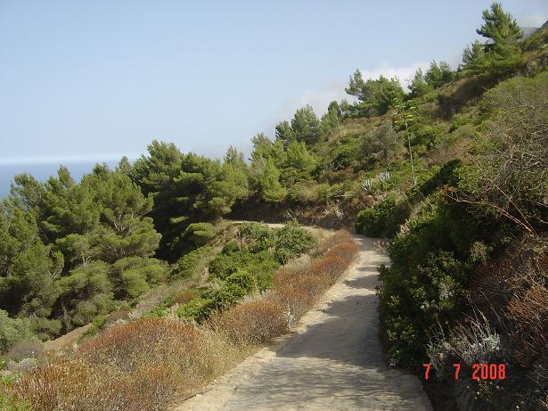 sentiero