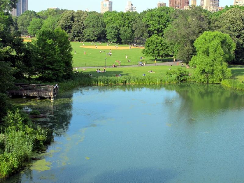 Central-Park-New-York-06