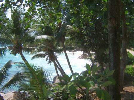 Seychelles-2009-334