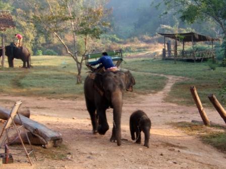 Thailandia-2001-0213