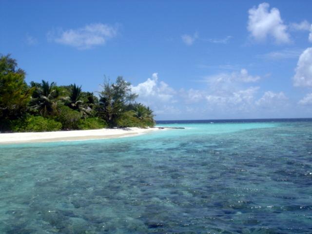 Maldive-Bathala-039