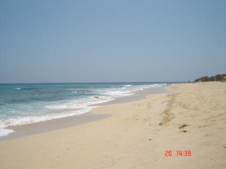 Playa-Alzada
