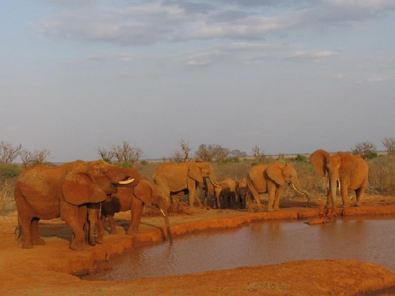 KENYA-AGOSTO-2009-319