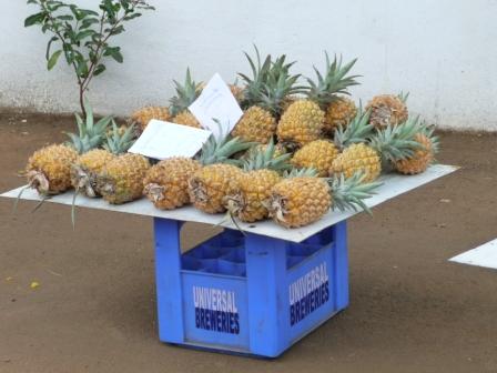 ananasi
