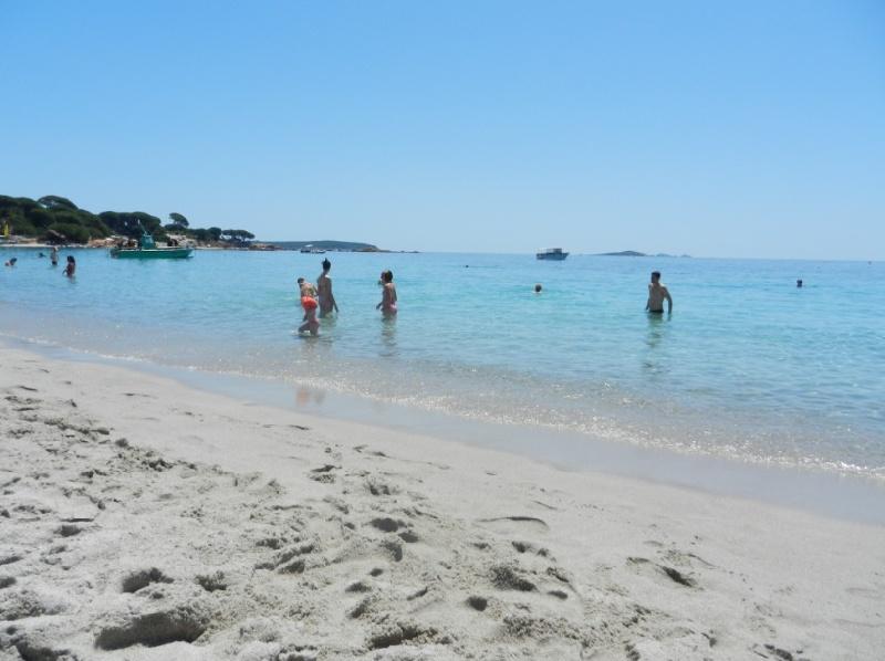 Spiaggia-Palombaggia
