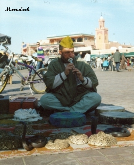marrakech-incantatore