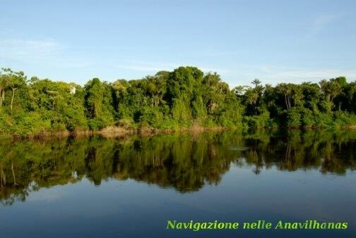 6-Arcipelago-Anavilhanas