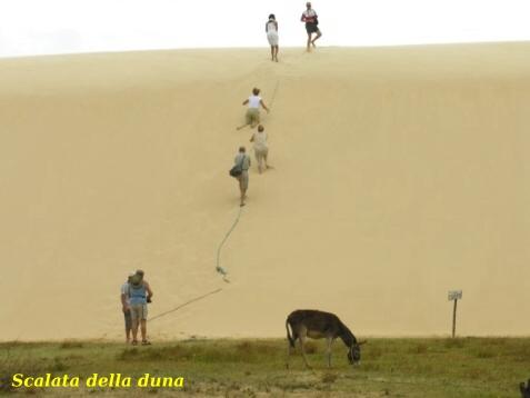 9-Scalata-della-duna