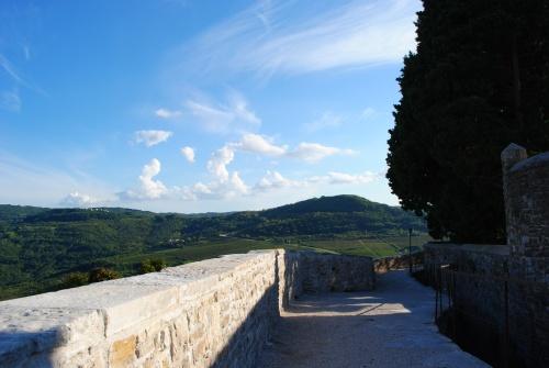 Motovun-panorama8
