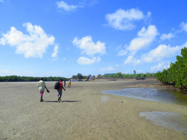Pat-Island